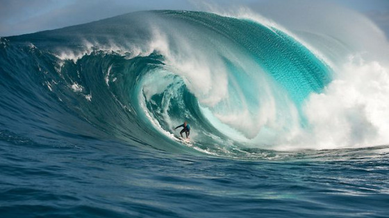 Wave-walker